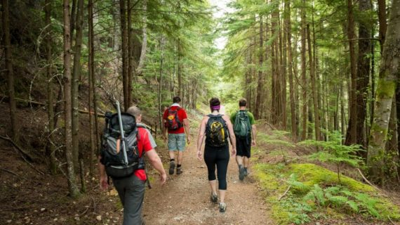 What hiking can do for your brain.